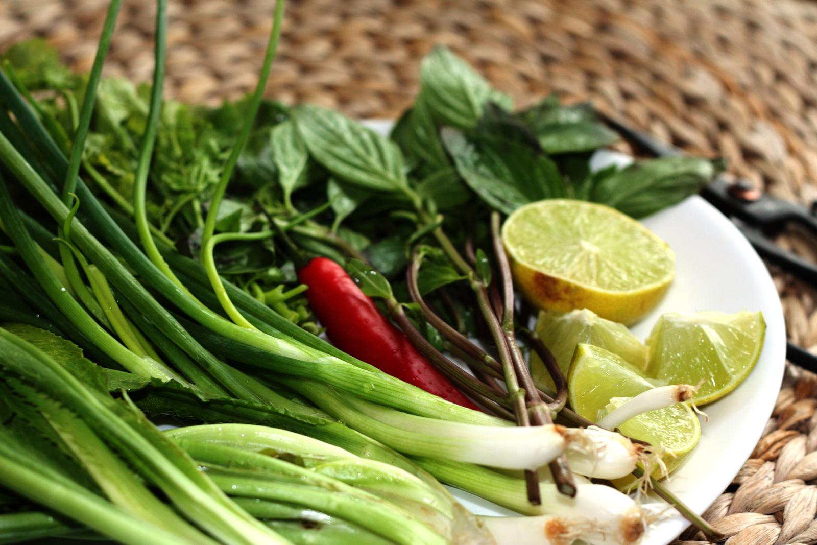 Herbes aromatiques pour le phò